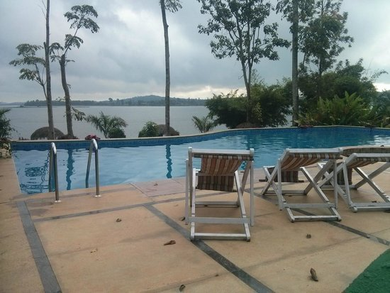 Infinity Pool Picture Of Coorg Jungle Camp Backwater Resort Kushalnagar Tripadvisor