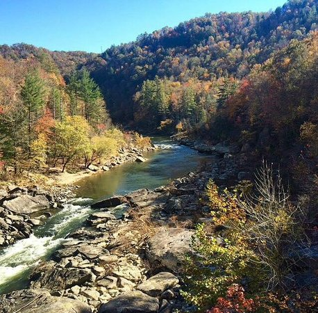 Bandy Creek Campgrounds: Big South Fork