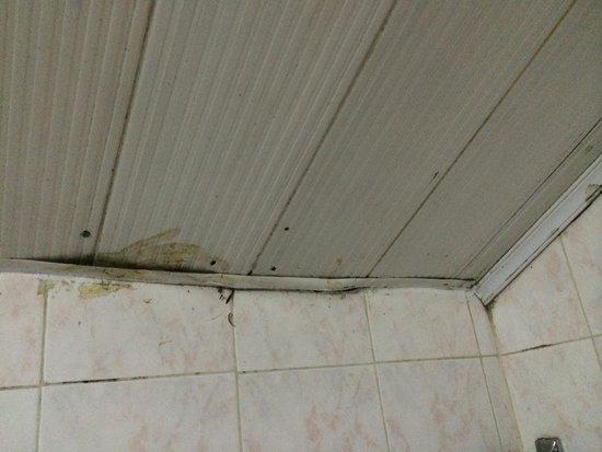 Grand View Sapa Hotel: Bathroom ceiling