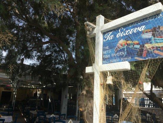 Your Greek Friend: Lunch Stop