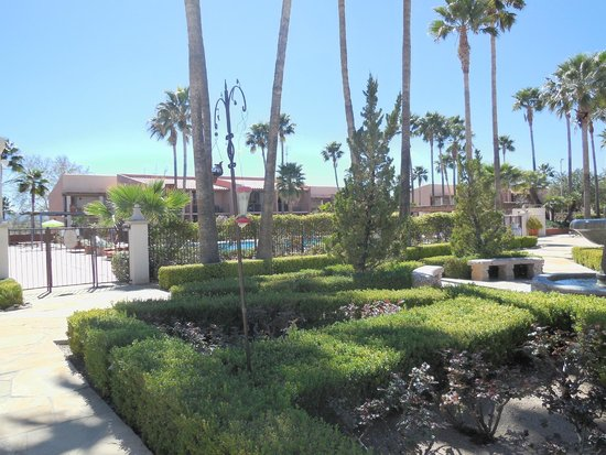 Esplendor Resort at Rio Rico: part of the grounds