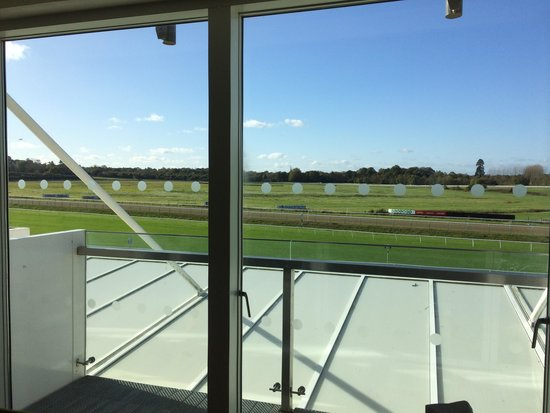 Lingfield Park Marriott Hotel & Country Club: Beautiful rural views from our balcony
