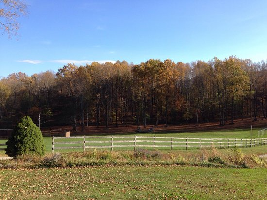 Fincastle, Virginie : Front pasture view from patio