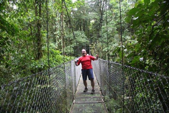 Rain Forest Aerial Trams : Em uma das pontes suspensas