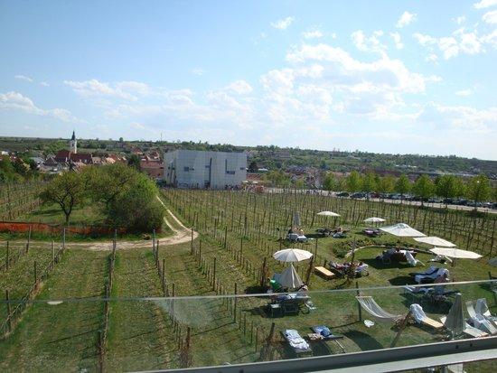 Loisium Wine & Spa Resort Langenlois : Blick vom Balkon auf die Weinwelt - Aufenthalt 2012
