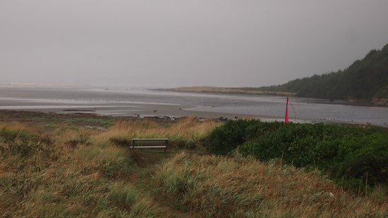 Hi-Tide Ocean Beach Resort : View from #14
