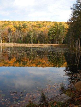 Devonfield Inn: reflections on a hike