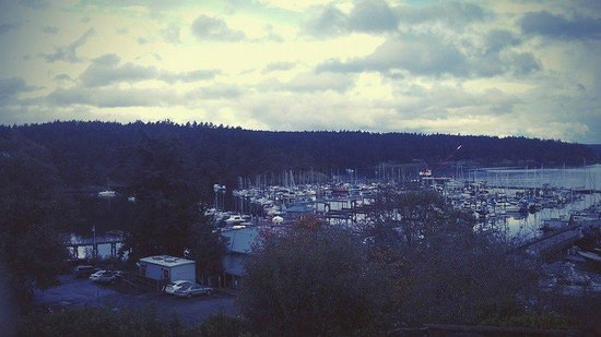 Friday Harbor House : View from our room on other side
