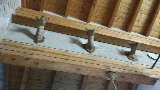 La Terrazza dei Pelargoni : Cabezas de animales disecadas en el salón... terrible