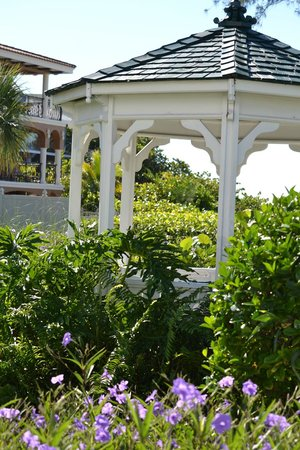 Harrington House Beachfront Bed & Breakfast: Gartenhaus