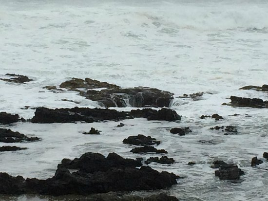 Cape Perpetua Scenic Area: hole cover back and forth by waves