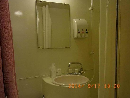 Toyohashi Green Hotel: ごくごく普通なバスルーム
