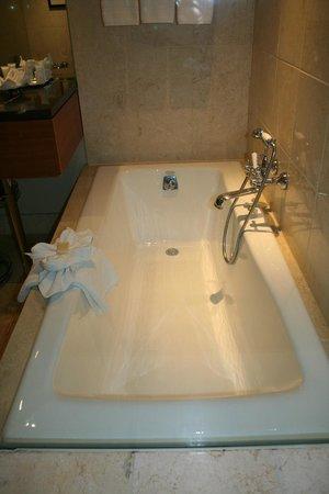 Hotel Teatro: Bathtub