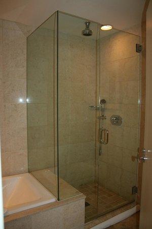 Hotel Teatro: Shower