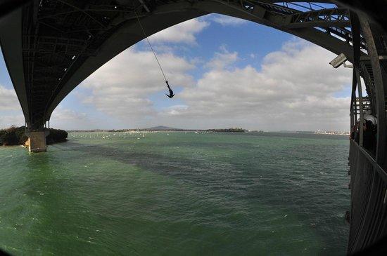Auckland Harbour Bridge: So this is the drop!