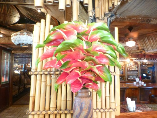 Colorful foliage decoration picture of mama 39 s fish for Mama s fish house