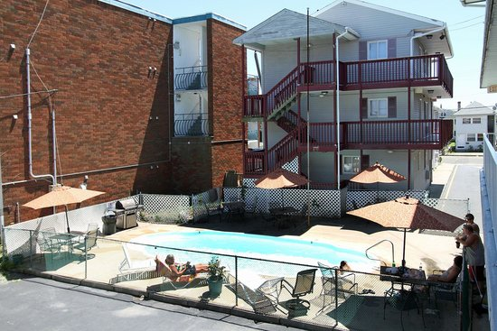 Sea Gem Motel and Apartments: Pool