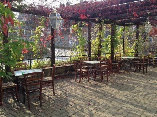 Ai Nebbioli : la terrazza