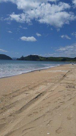 Whatuwhiwhi TOP 10 Holiday Park: Beach