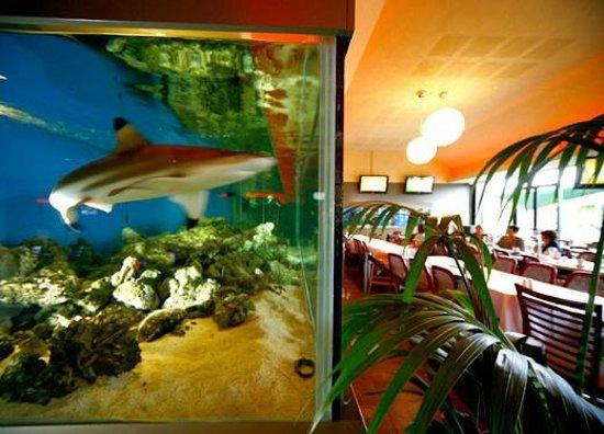 Towradgi Beach Hotel Room Prices