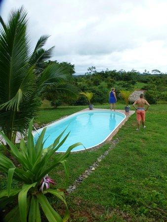 Finca Buena Vista: Zwembad