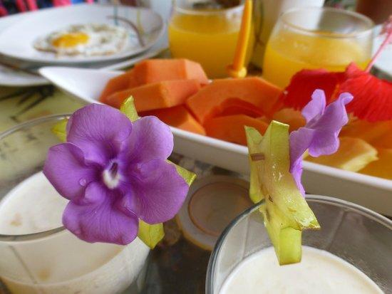 Finca Buena Vista: Yoghurt, gebakken eitje en vers fruit voor het ontbijt.