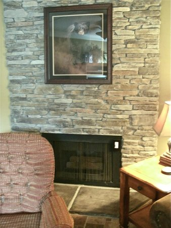 The gas fireplace was nice & functioned well!