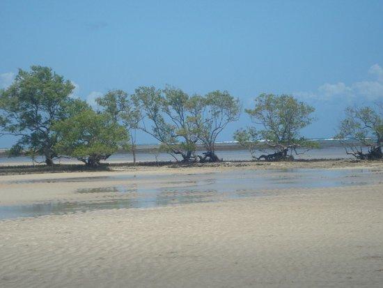 Quinta Praia (Praia do Encanto): Quinta praia