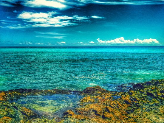 Ocean Spray Beach Apartments: Favourite pool
