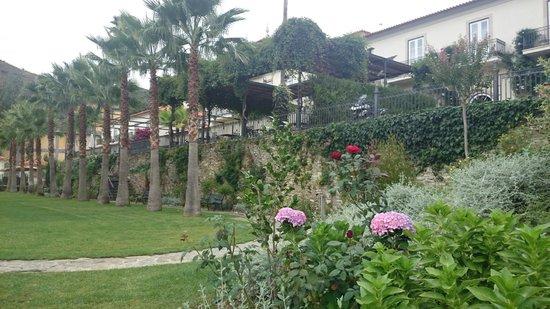 Vintage House Hotel: Jardim do hotel
