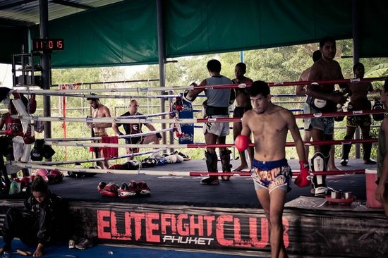 Elite Fight Club Phuket