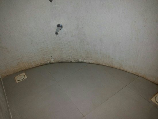Regenta Resort Bhuj: Dirty bathroom of executive room