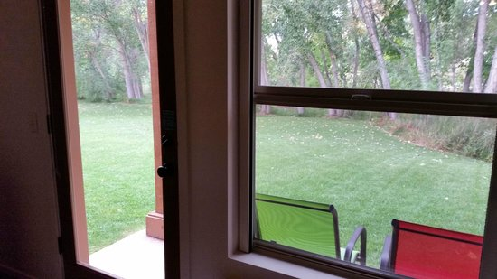 The Gonzo Inn: Looking at the back lawn from my room