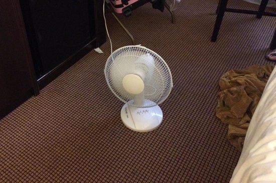 Skyline Hotel & Waterpark: No joke about the air conditioning. This is the solution if the hotel is on heat. It is one or t