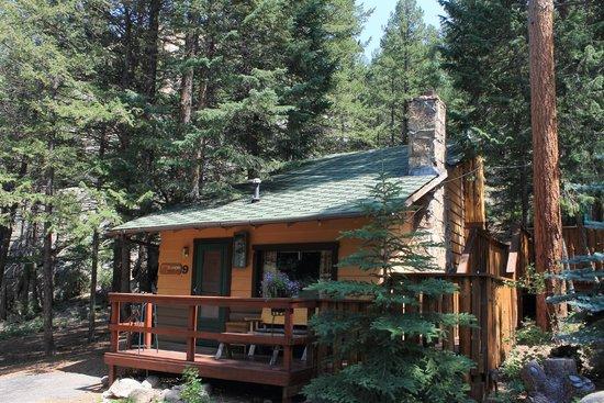 Pine Haven Resort: Cabin 9