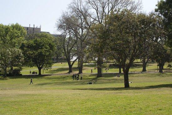 Flagstaff Gardens: Vista dei giardini.