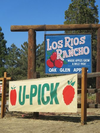 Oak Glen, CA: Riley's @ Los Rios Rancho