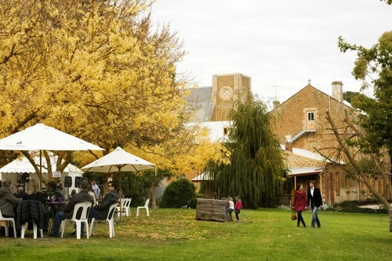 Barossa Valley, Australia: Pikes at Clare Valley