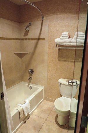 Silver Cloud Inn NW Portland: Clean bathroom with shower/tub; Aveda toiletries