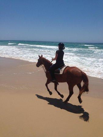 Equathon Horse Riding Tours - Day Tours: Wheeeee!