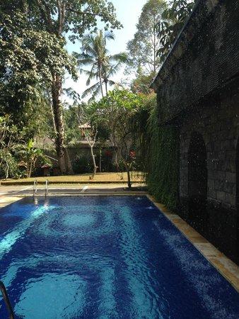 Alas Petulu Cottages: BEAUTIFUL POOL