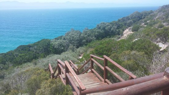 Robberg Nature Reserve: The initial climb and the scenery it brought