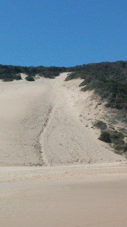 Robberg Nature Reserve: Run this part