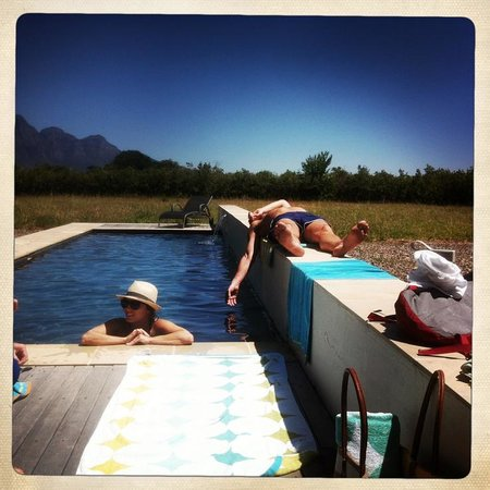 La Chataigne Wines and Guest Cottages: Morning till afternoons are perfect by the pool...