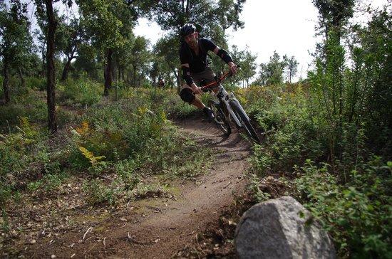 The Mountain Bike Adventure: Foia 10k run