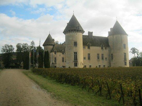 ch teau picture of chateau de savigny les beaune savigny les beaune tripadvisor. Black Bedroom Furniture Sets. Home Design Ideas
