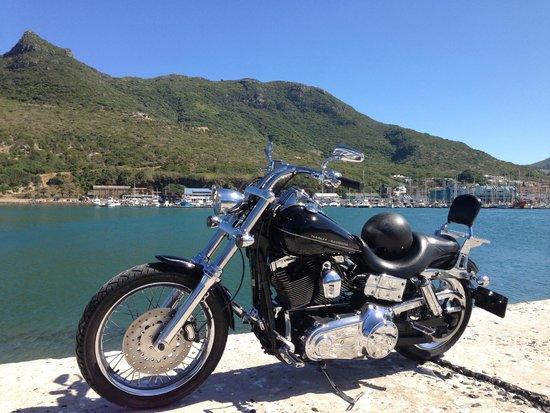 Skaris Touring: Awesome Bikes!