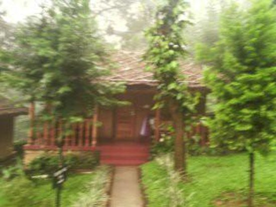 Thekkady - Woods n Spice, A Sterling Holidays Resort : COTTAGE