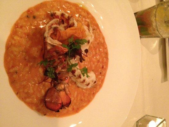 Restaurant Balances : lobster risotto