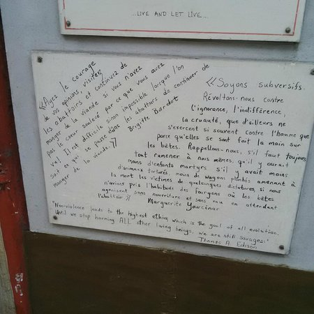 Le Speakeasy: Des petits textes éclairés sur la devanture